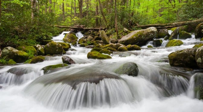 Rushing water at the Roaring Fork Motor Nature Trail in the Smoky Mountains.