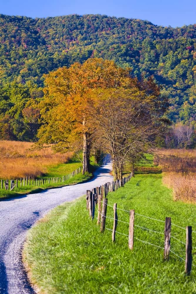 6 Unique Things You Can Only Do In Cades Cove